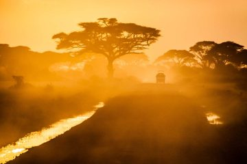 bucket-list-africa-lead