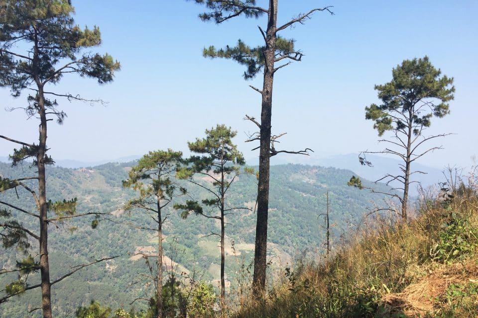 pui-mountains