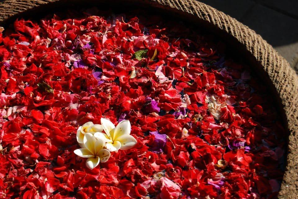 Flower petals, Ubud, Bali