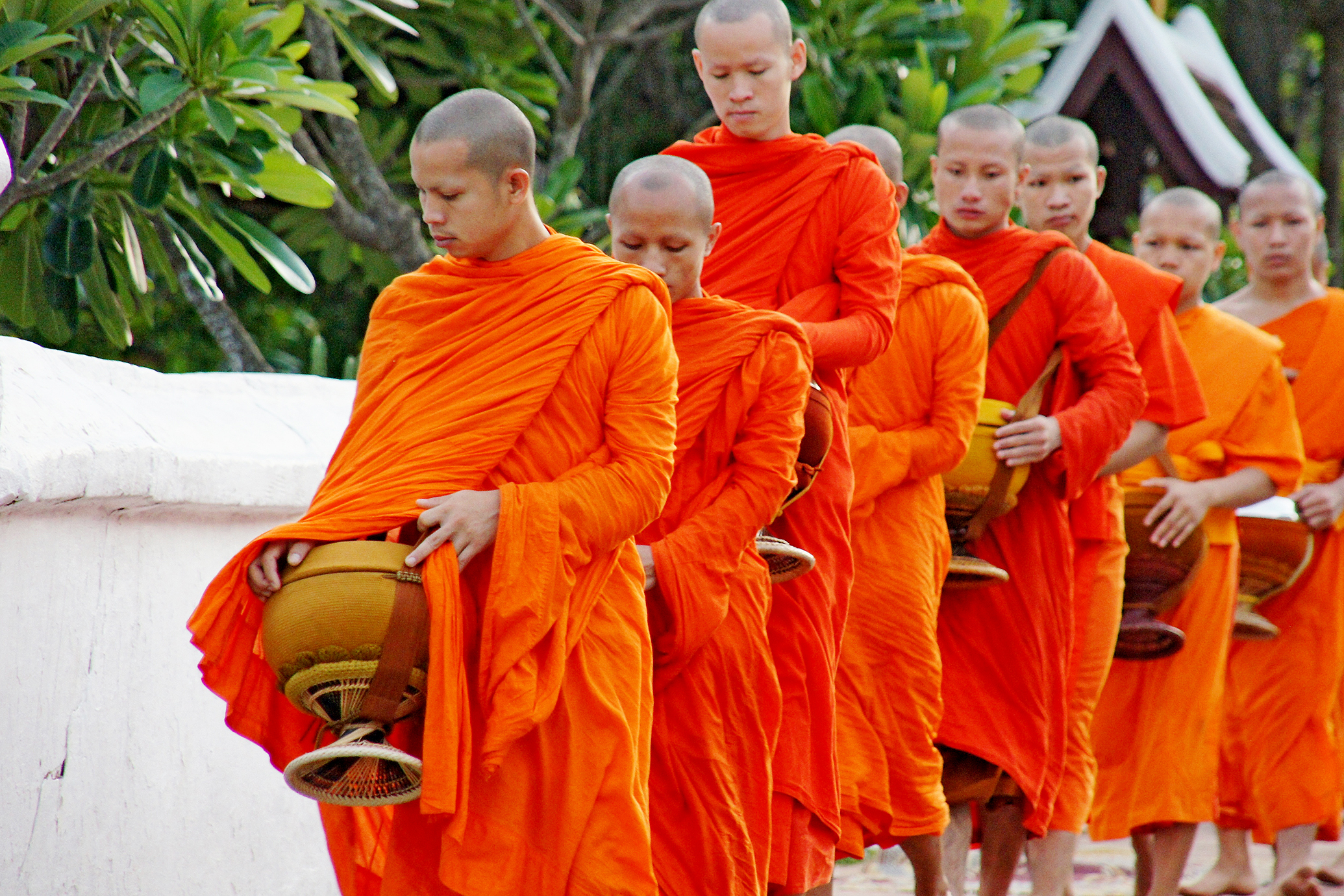 Monks lining up for alms in Luang Prabang