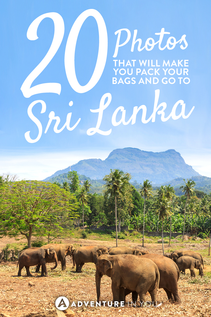 Looking for travel inspiration? These 20 photos of Sri Lanka will make you want to pack your bags and go now!