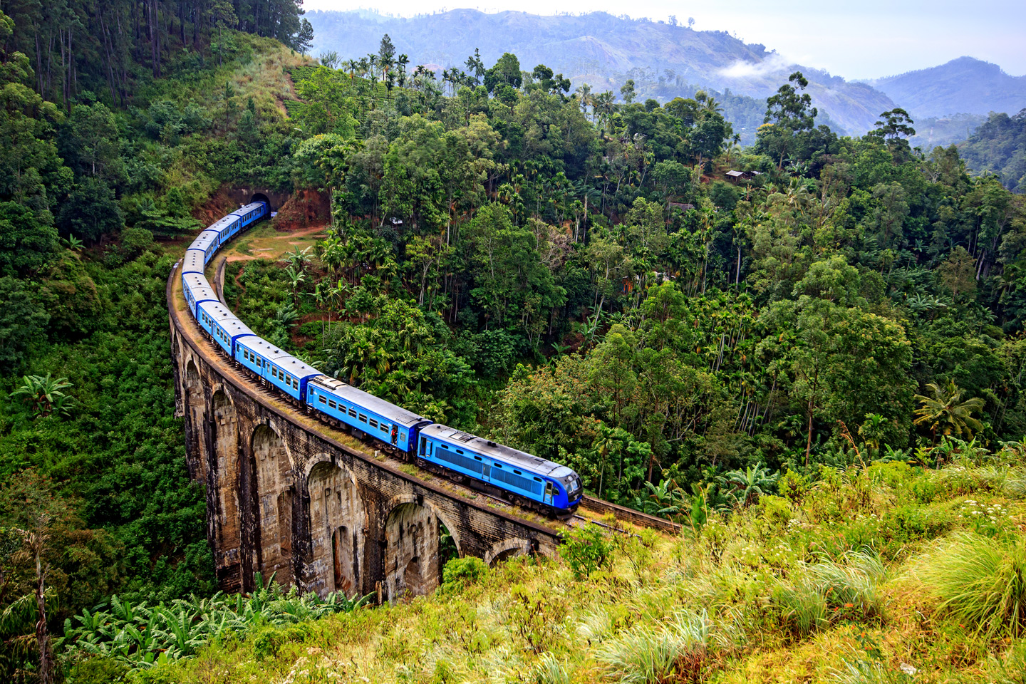 Train on the Nine Arch Bridge in Sri Lanka