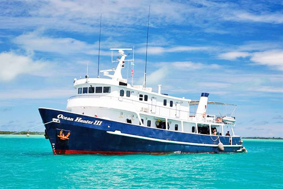 Ocean-hunter-liveaboard-palau