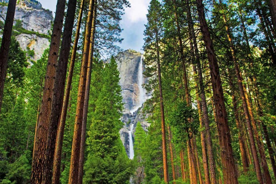 Yosemite-Waterfalls