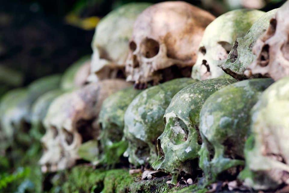 Banyan tree bali skulls