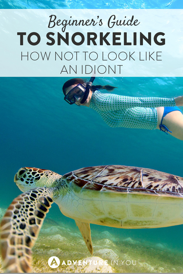 Fancy giving snorkeling your best shot? Check out our beginners guide to the sport