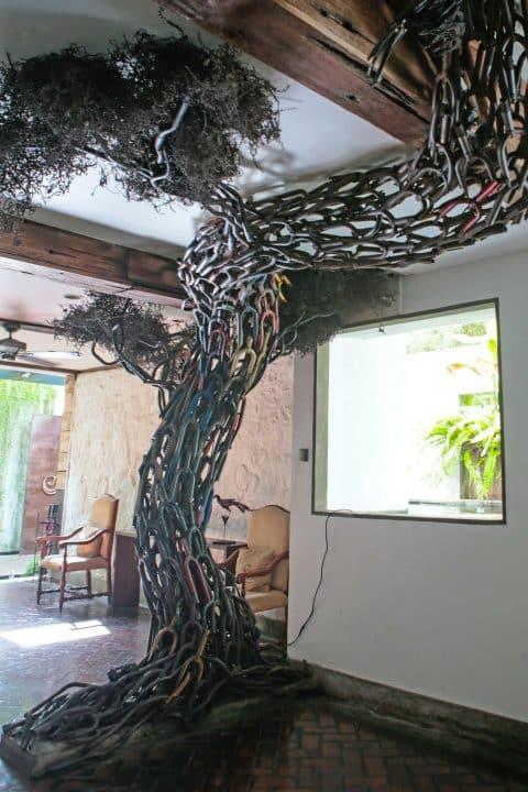 colombo-tree