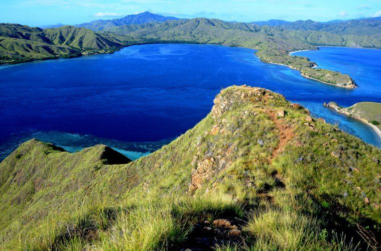 best liveaboard komodo national park