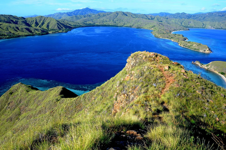 best liveaboard komodo national park