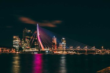 rotterdam city lead