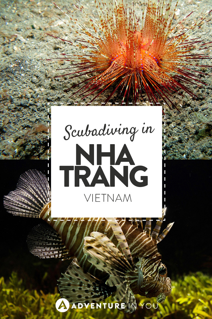 Scubadiving in Nha Trang is an amazing experience! Check out how we found it