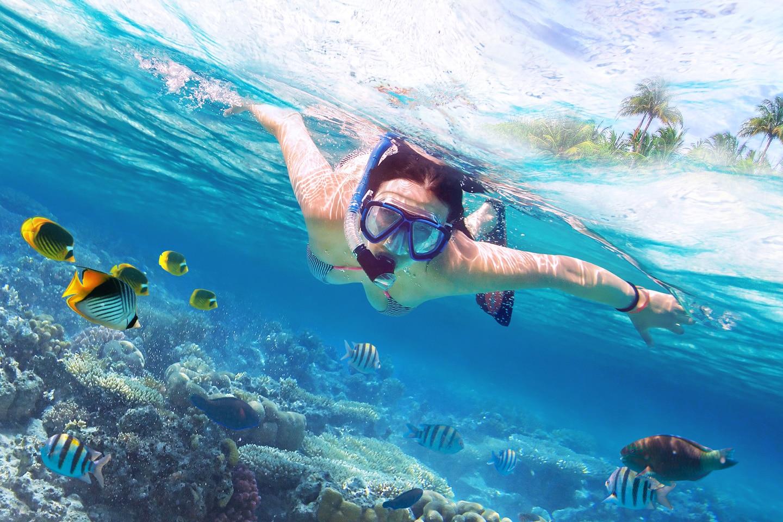 snorkel-phiphi
