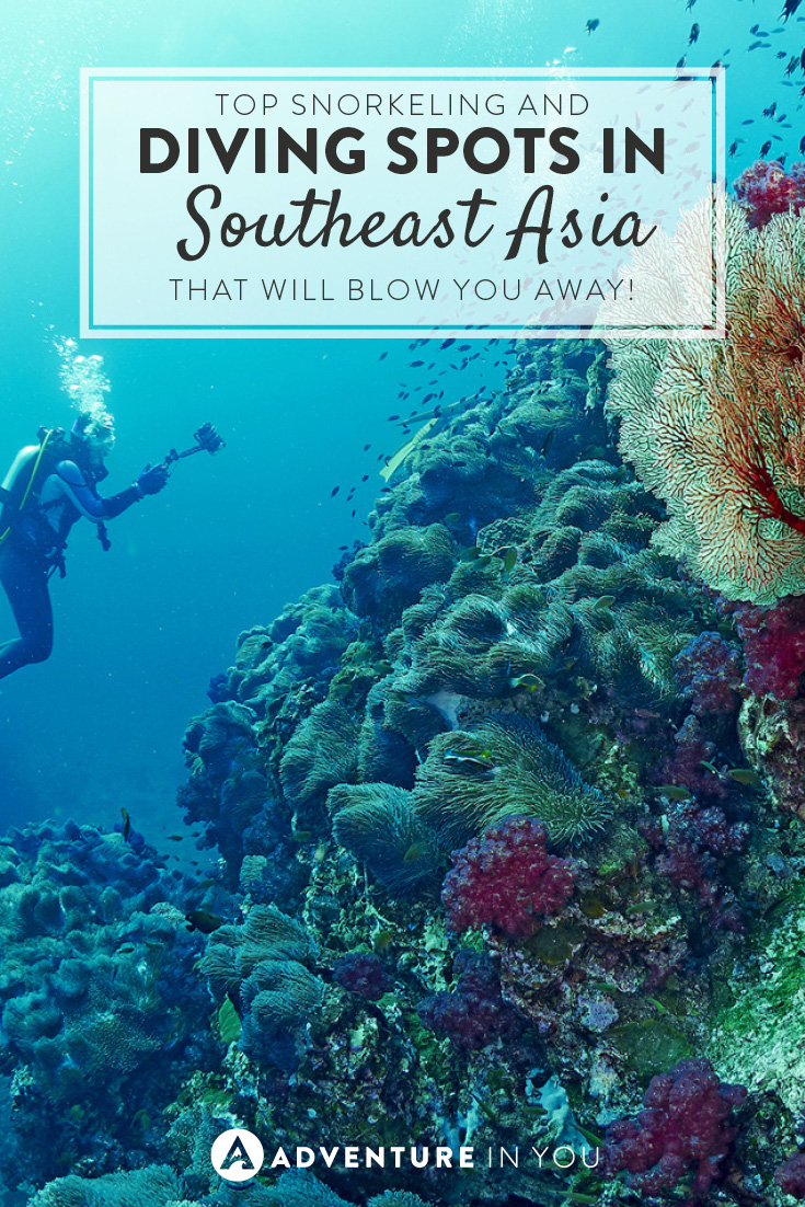 Top Snorkeling And Diving Spots In Asia That Will Blow You