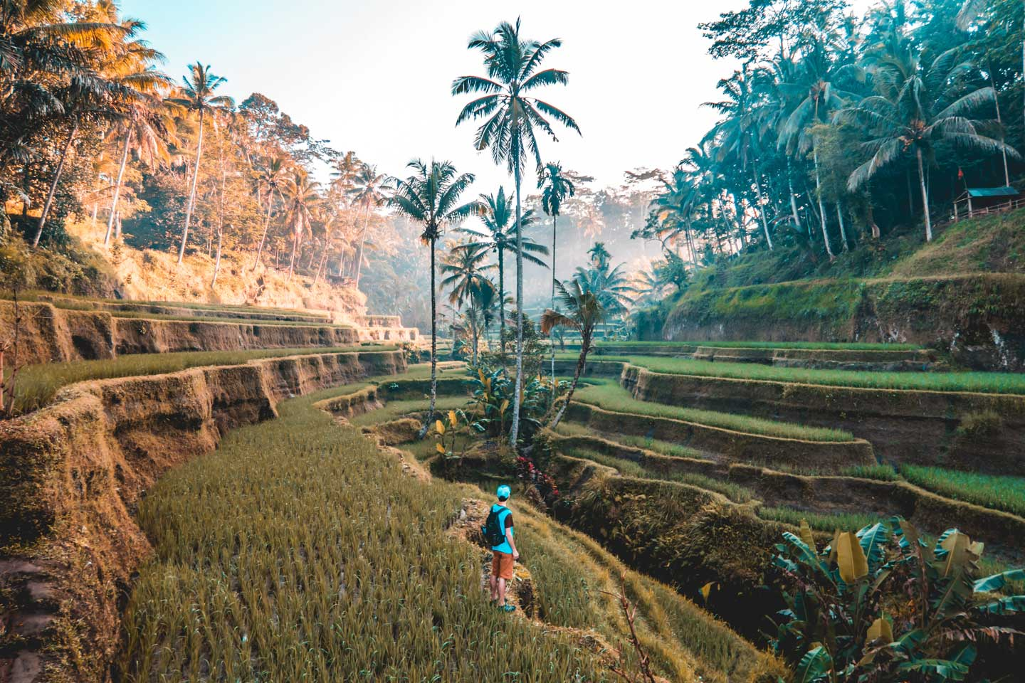 Best Places To Travel In Thailand In September