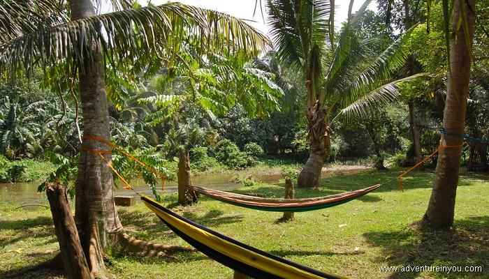 hammock, Southeast Asia