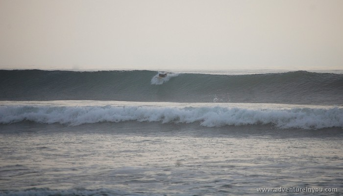 tom rogers surfing in olon