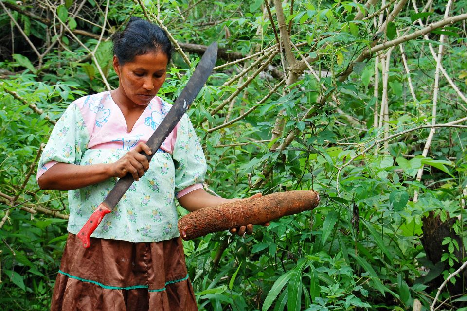 A woman with a machete in the forest