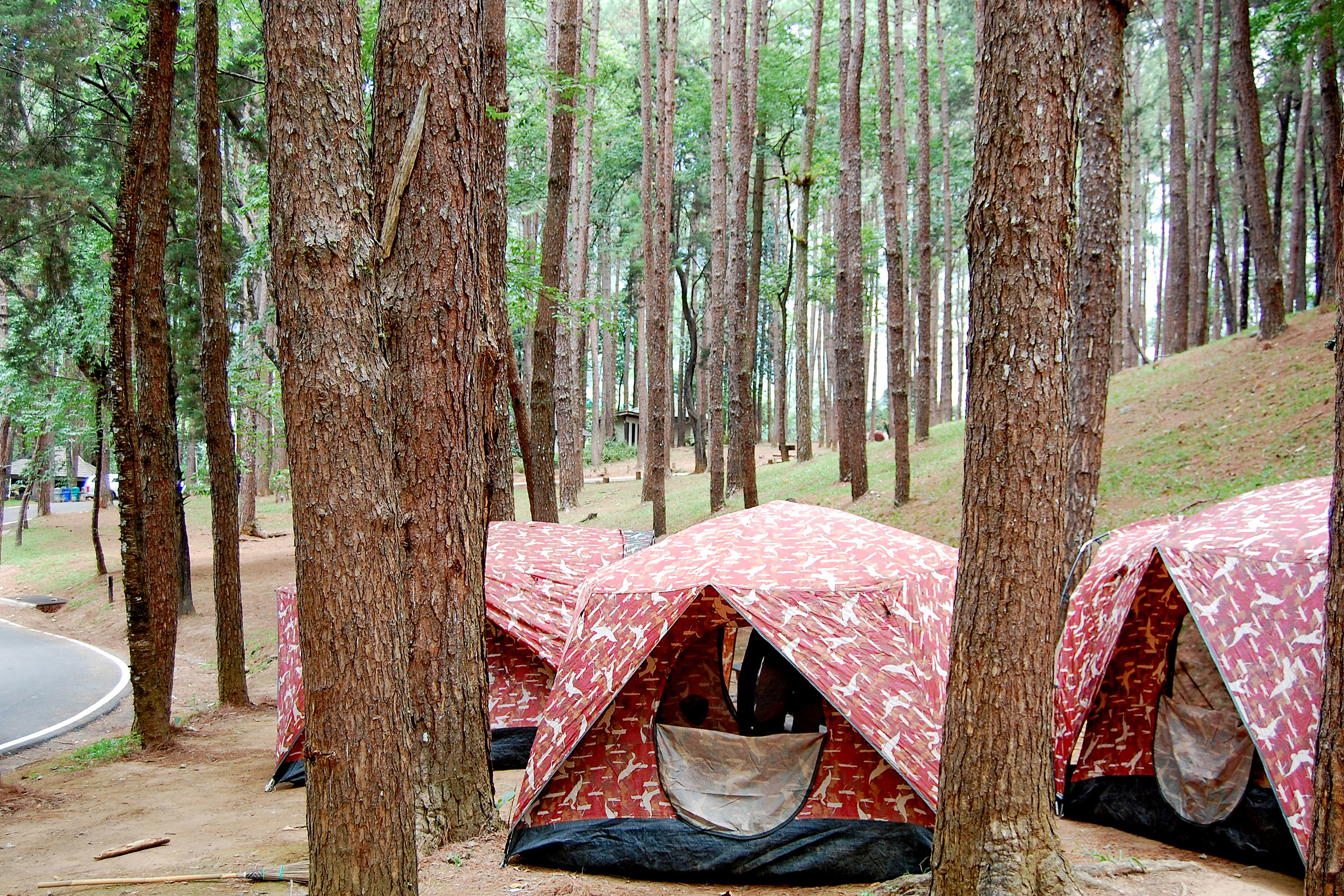 doi inthanon tents camping