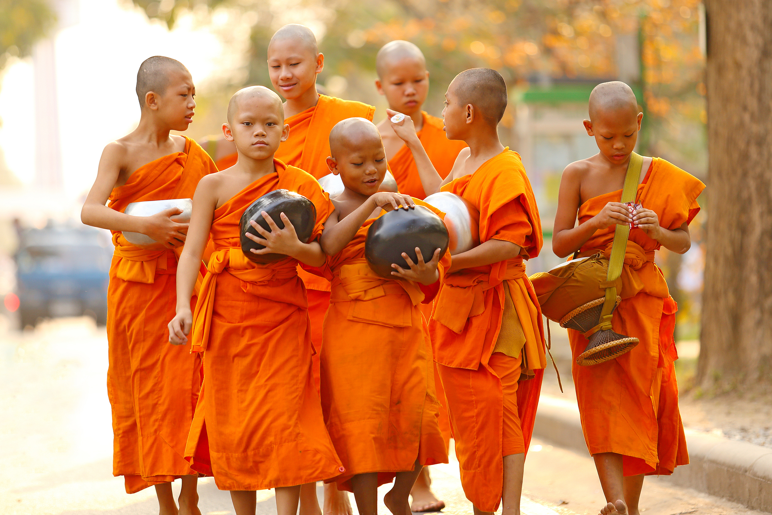 A group of young monks in orange robes