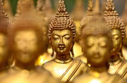 Close up of the faces of golden buddhas