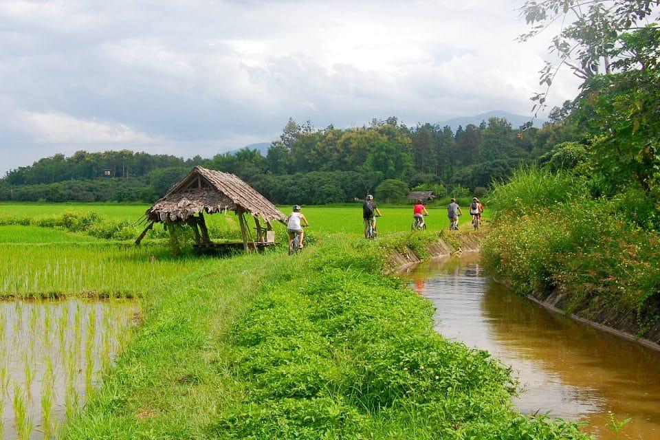 hiking-biking-chiang-mai6