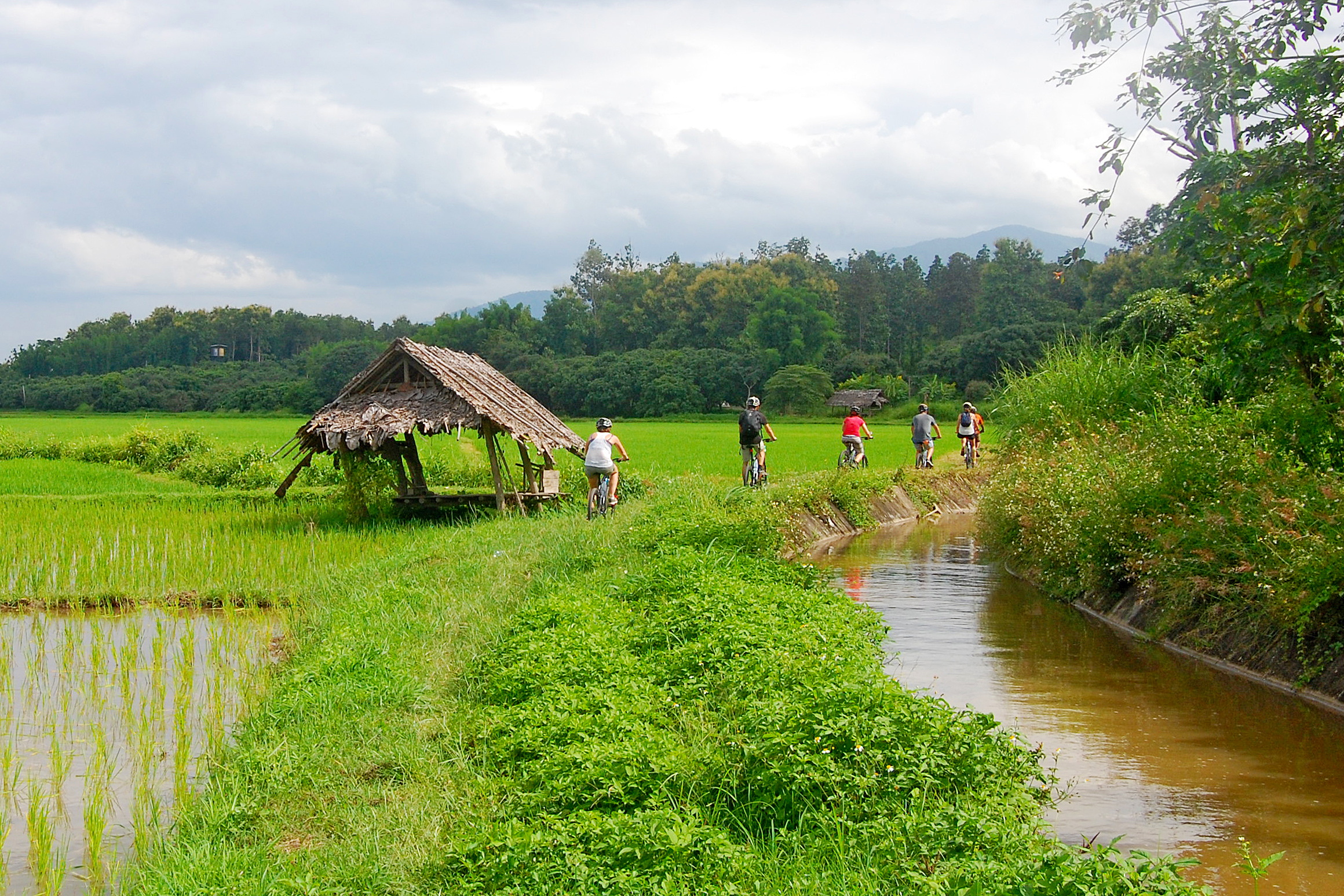 147314d3c5 Experience Hiking and Biking in Chiang Mai