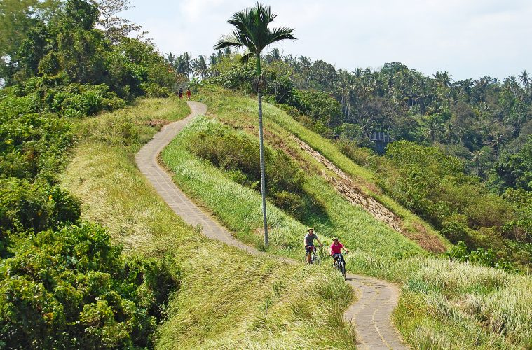 A couple biking up a mountain path