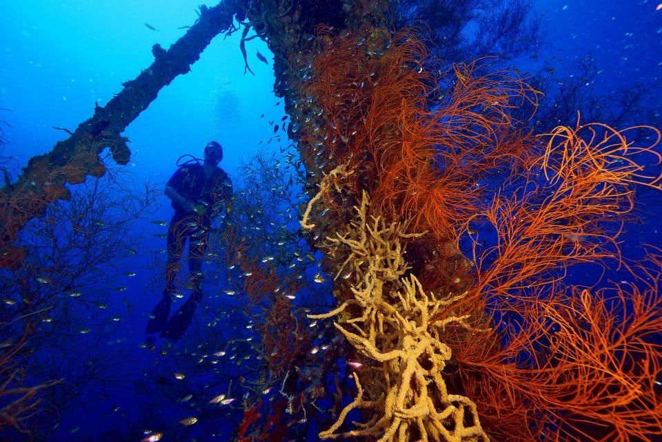 ww2-shipwreck-diving-coron1