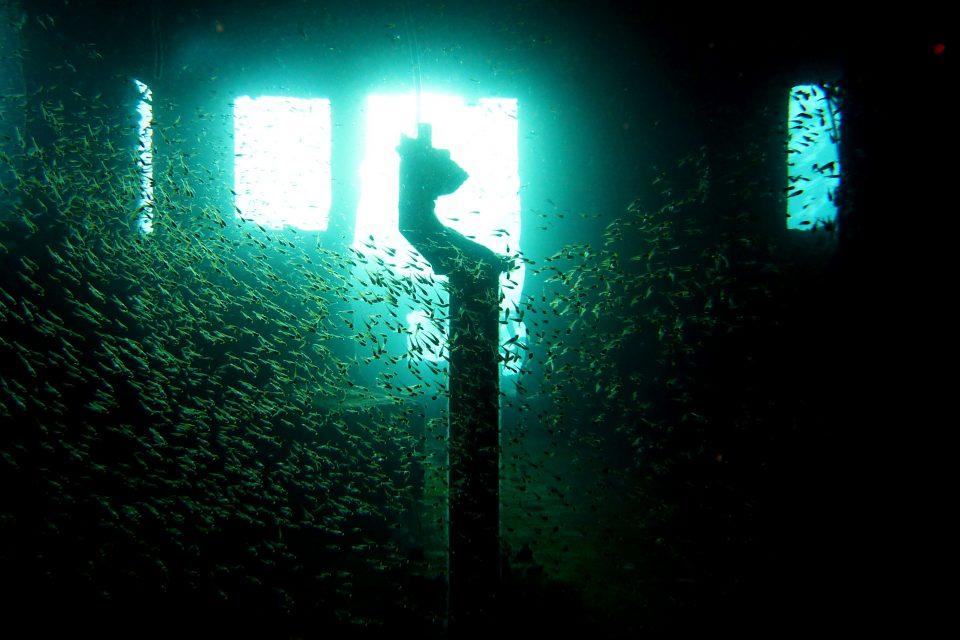 ww2-shipwreck-diving-coron5