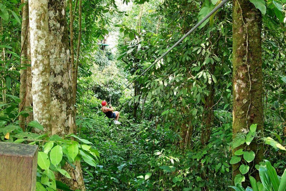 Man ziplining at Flight of the Gibbon