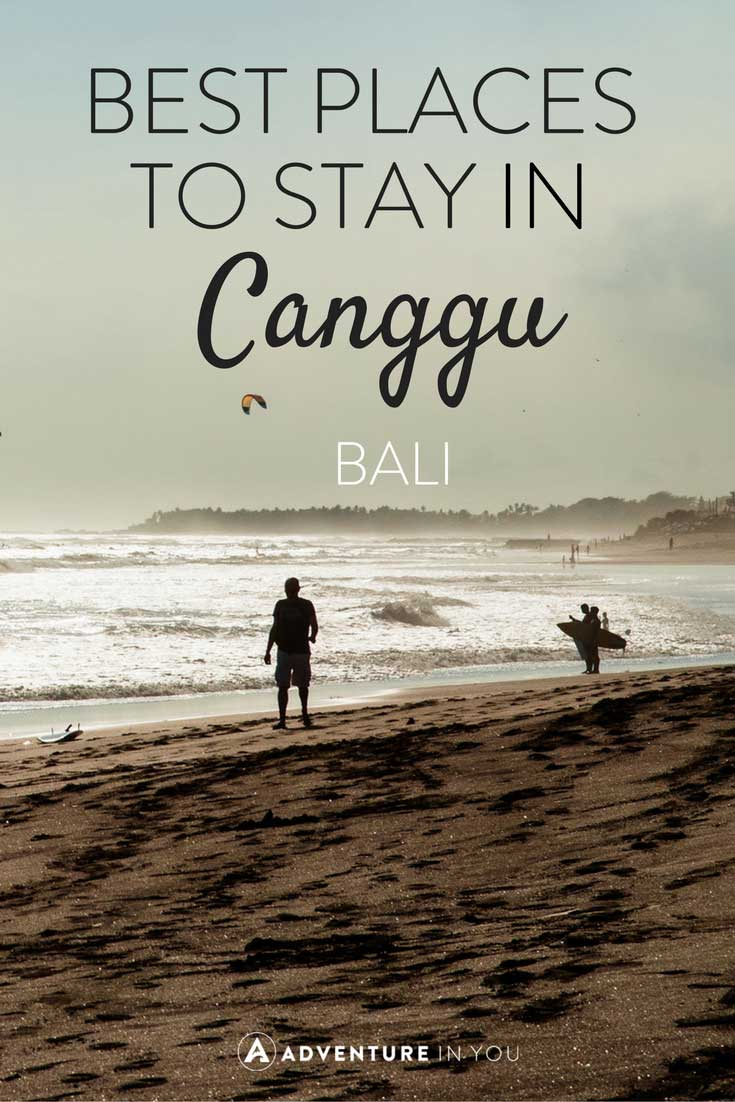 Looking for the best place to stay while in Canggu Bali? Here are our recommendations