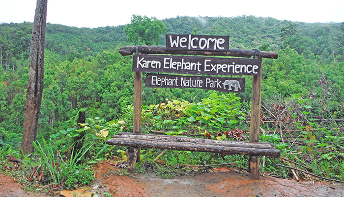 karen elephant experience review