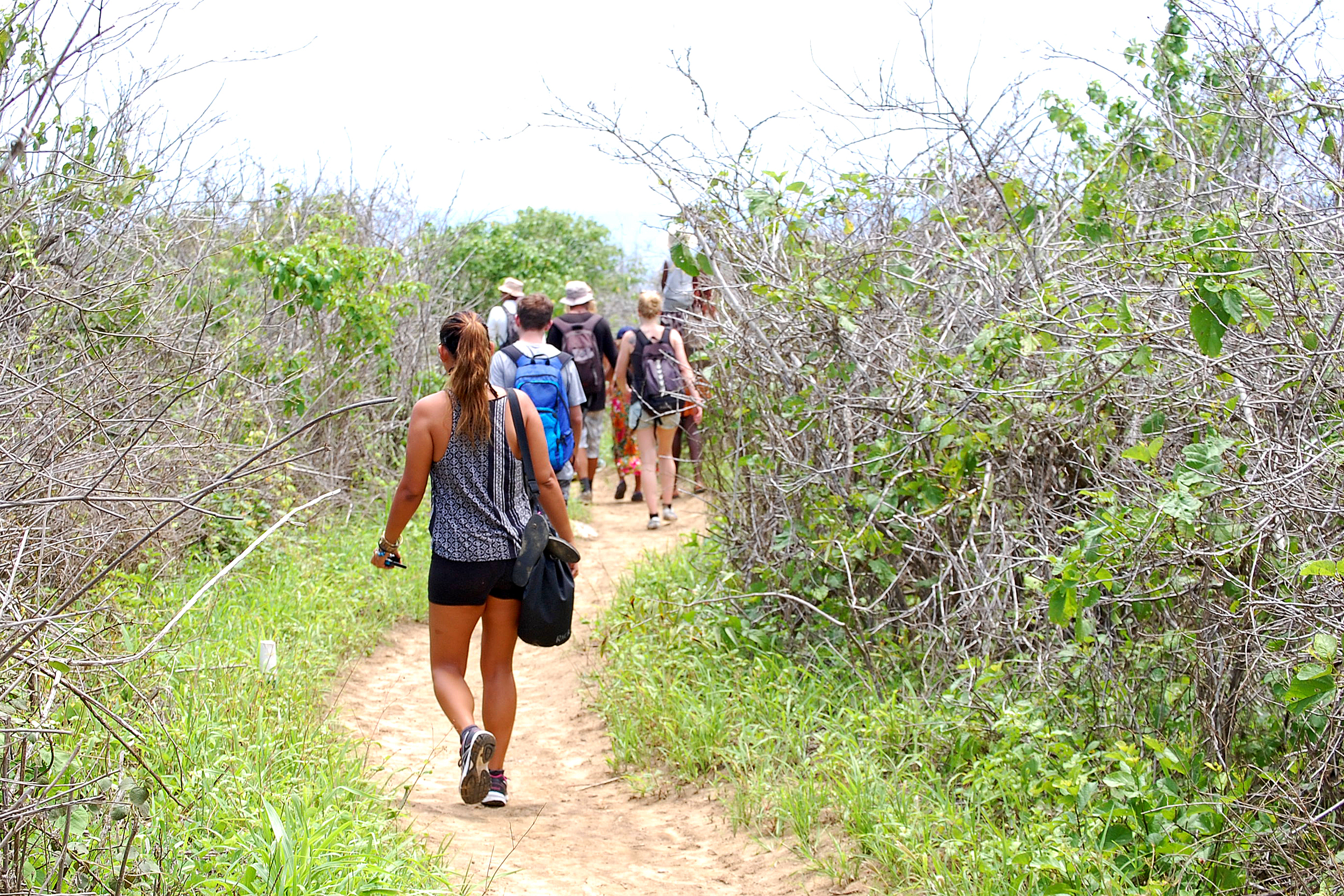 A group walking on a rugged outdoor path