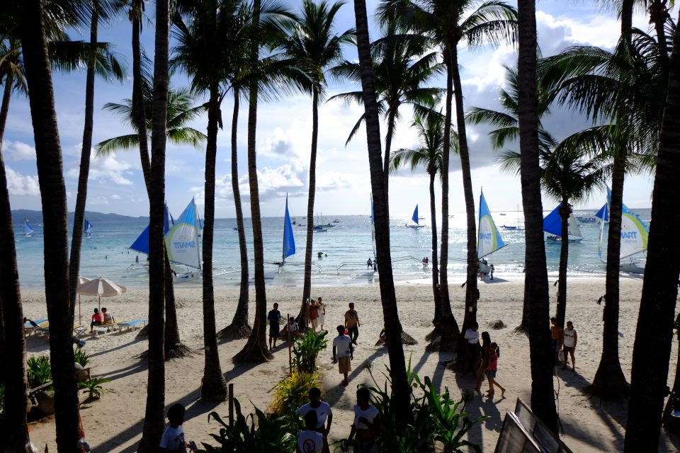 A view of sailboats on the sea through palm trees