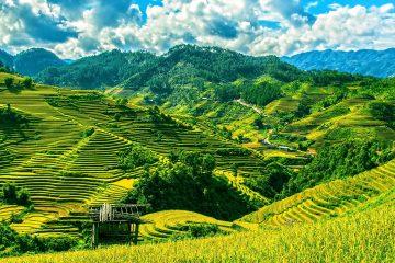 reasons-nottovisit-vietnam-sapa