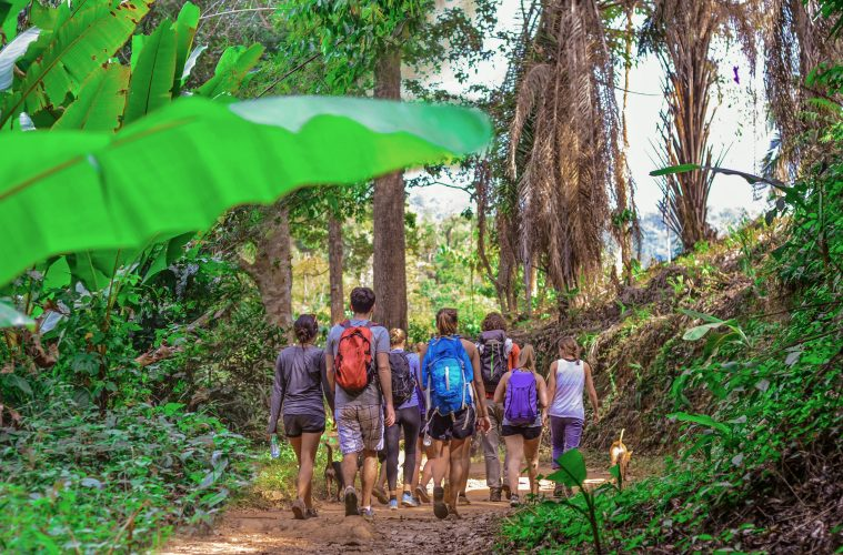 trekking group thailand
