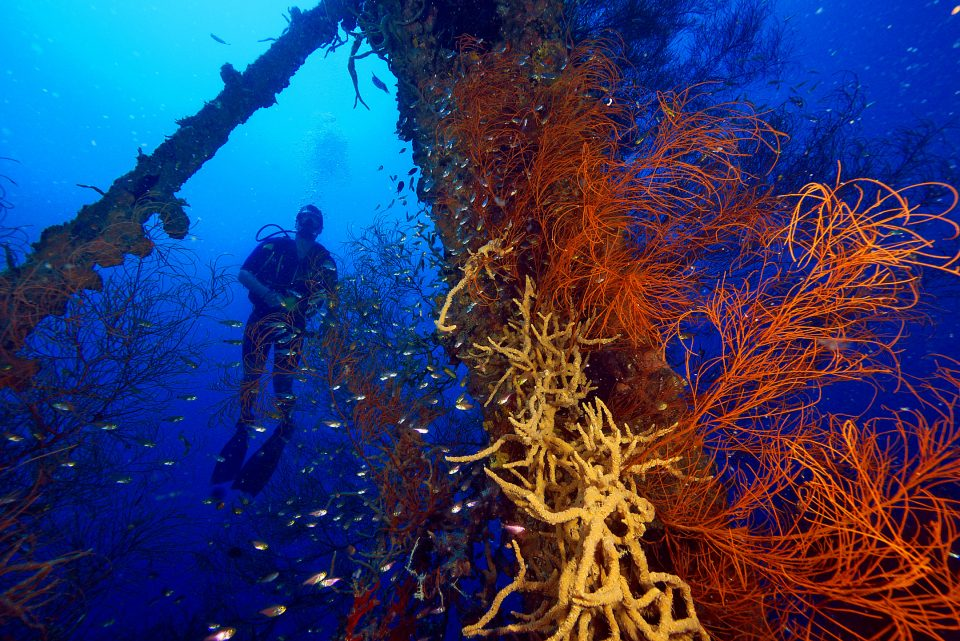 Diving through shipwrecks