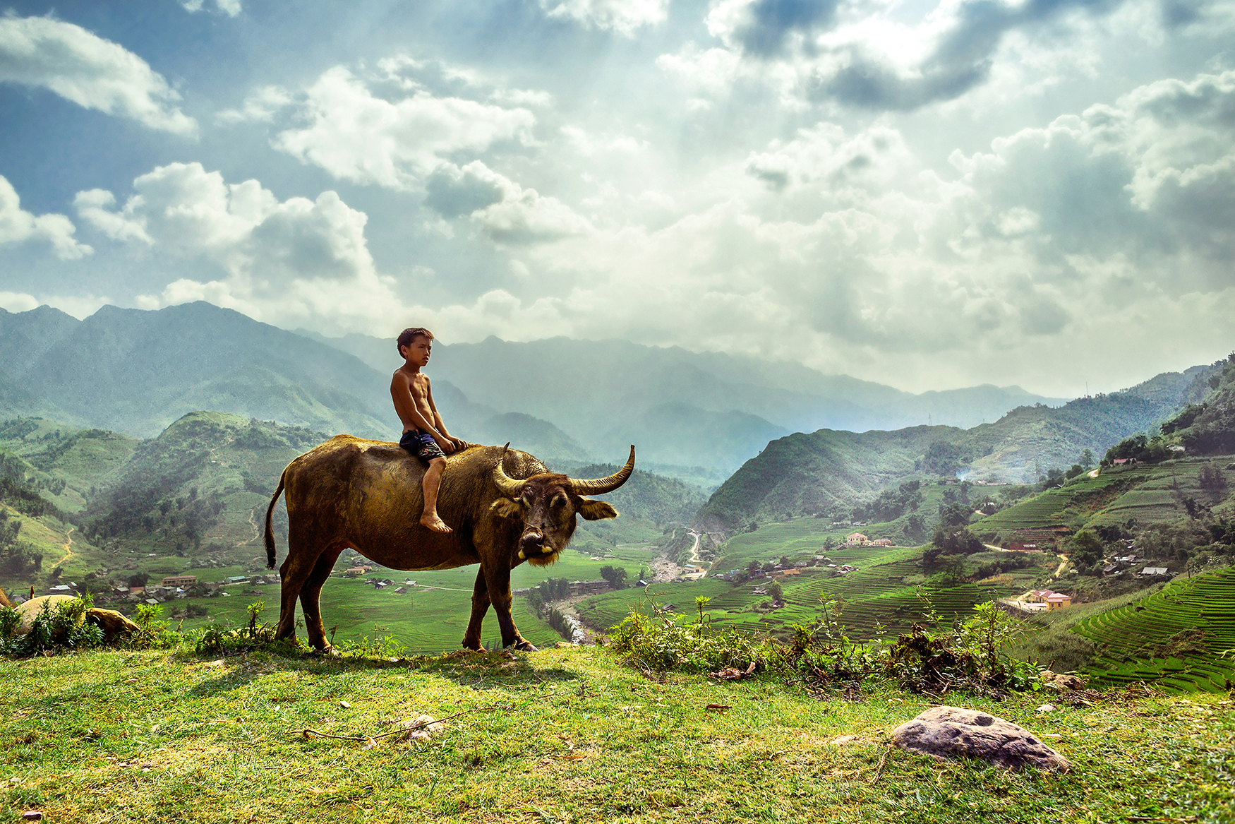 A local man sitting on a cow with mountains behind