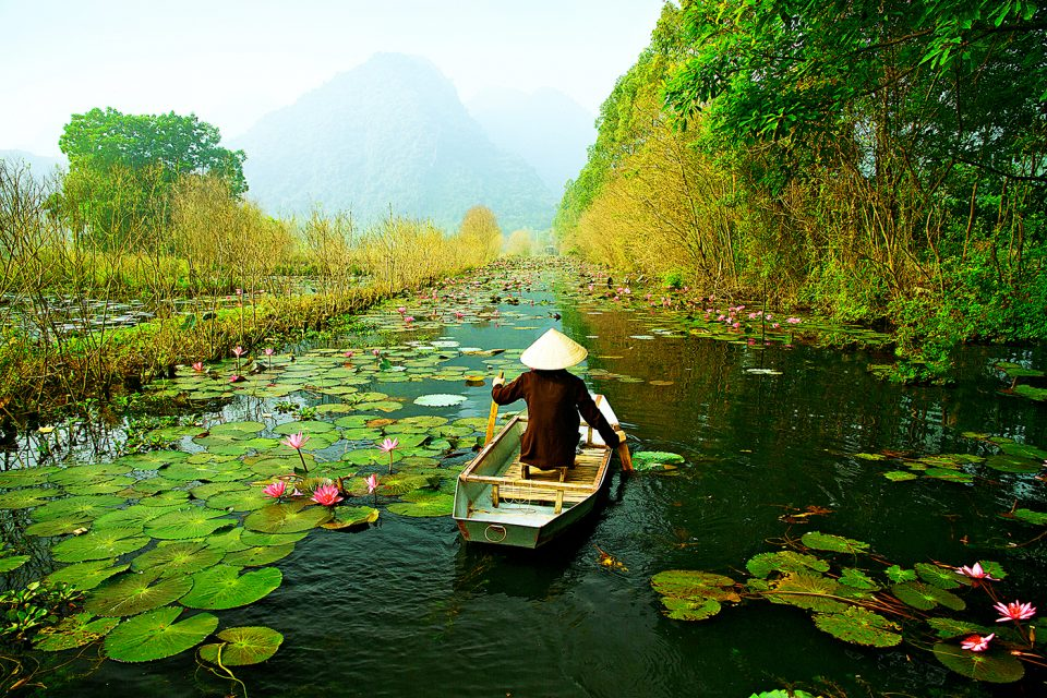 A woman paddling down a river full of lily pads on a canoe