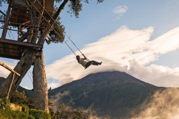 A woman on a tree swing on top of a mountain