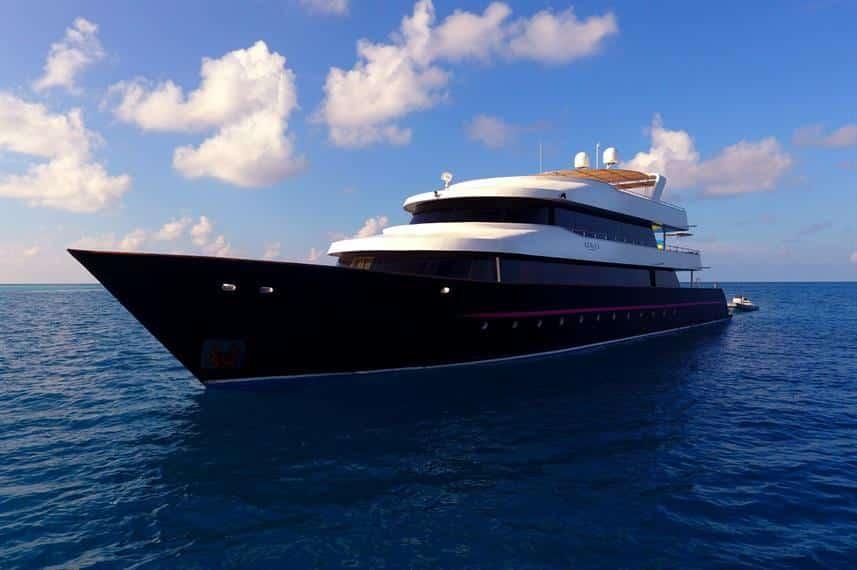 azalea boat
