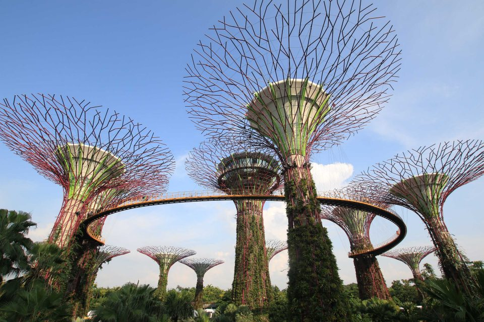 Singapore Travel Tips: A Complete Guide to the Country
