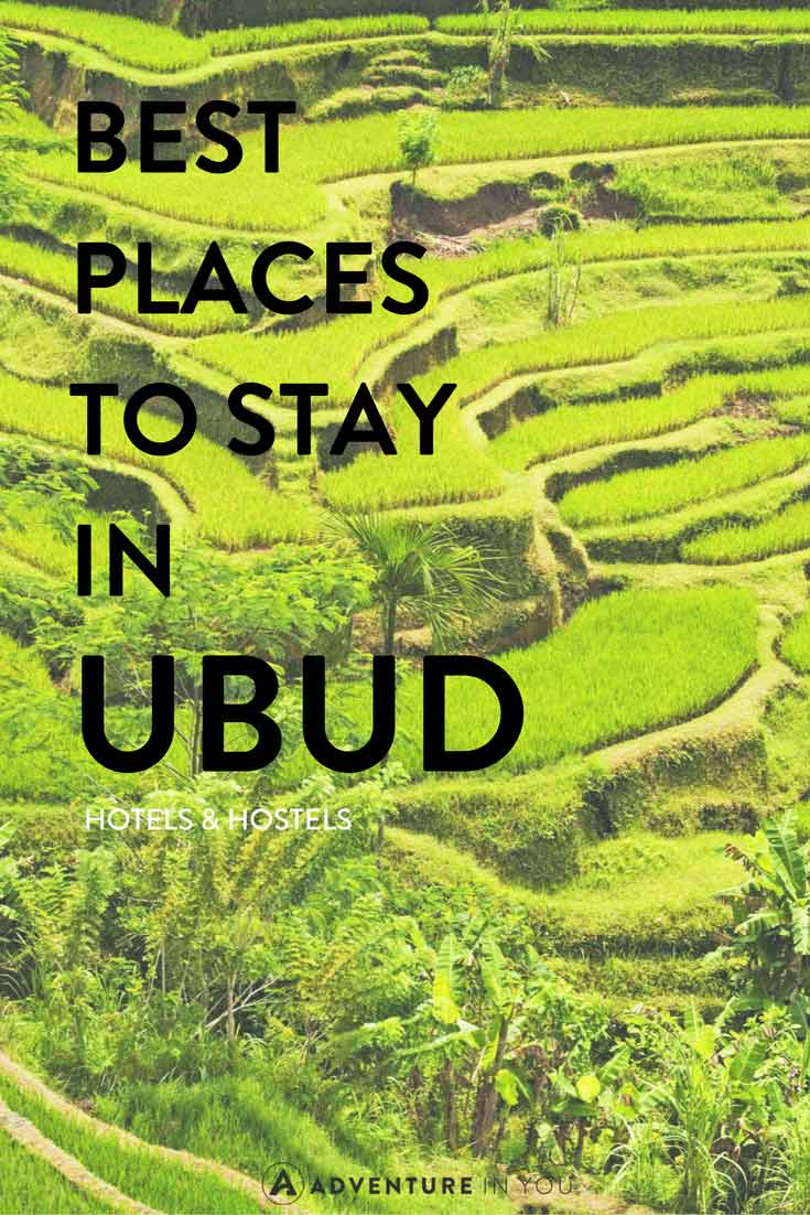 Where to stay in ubud bali best hotels hostels for Best places to stay in bali
