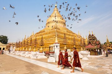 Monks outside a golden temple