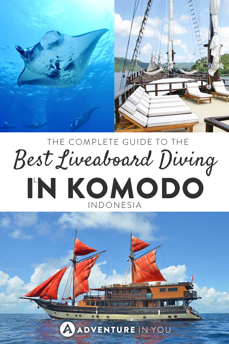 Planning an epic liveaboard trip to Komodo? Here is our complete guide, reviewing the best boats and crews.