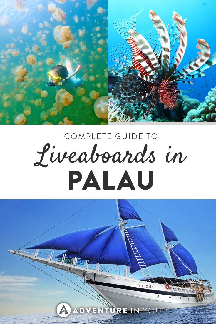 Diving in Palau | Complete Guide to Palau Liveaboards. From comparing boats to choosing the best dive sites