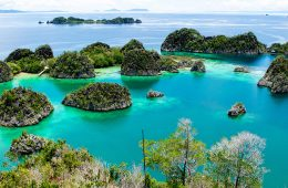 Island at Piaynemo in Raja Ampat, Indonesia