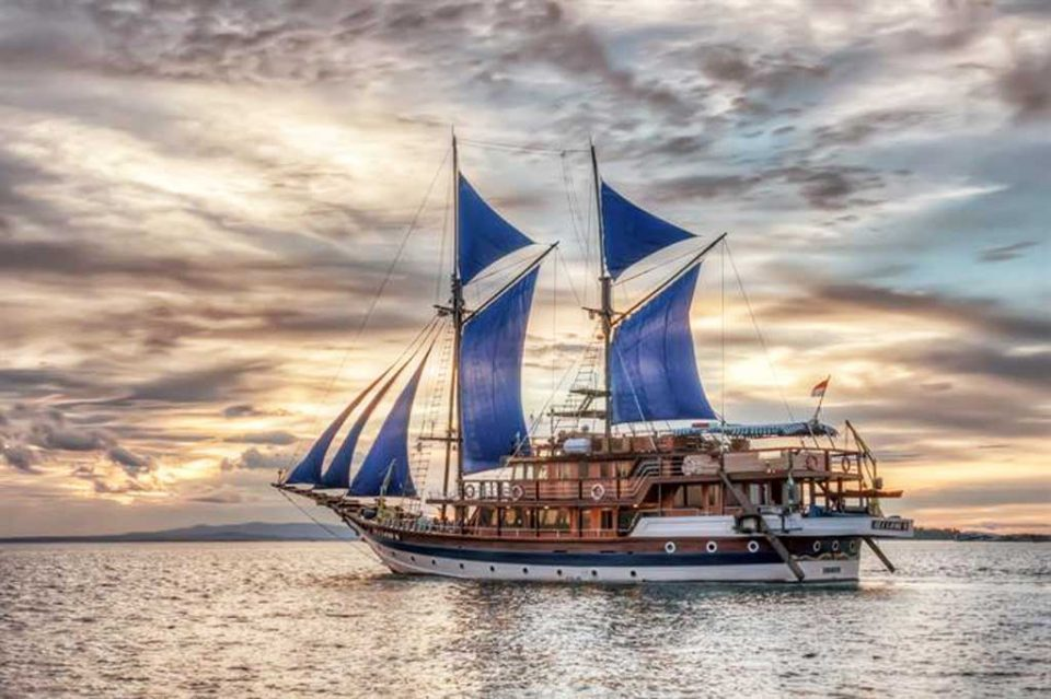 sea-safari liveaboard