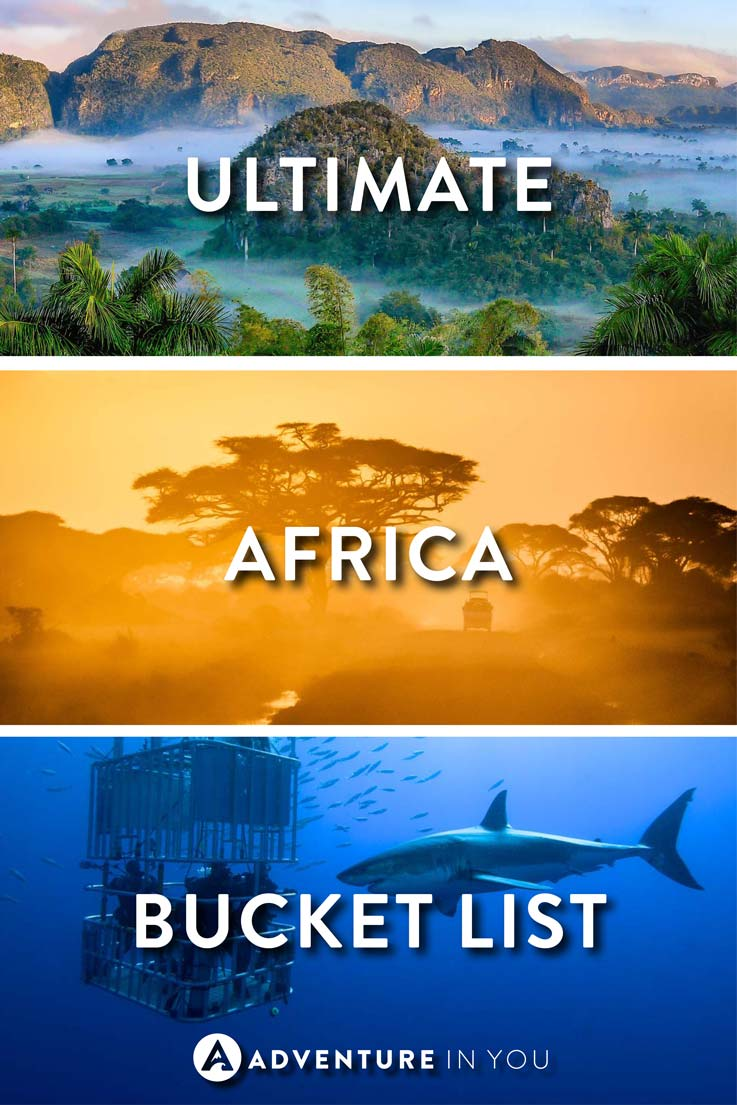 Africa Travel | Looking for the best things to do in Africa? Read our article and find out which things to do in Africa you need to add to your travel bucket list