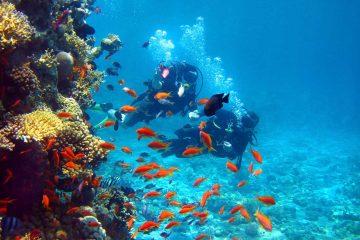 cambodia-diving-lead